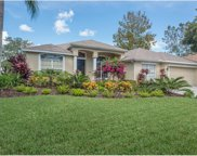 18714 Chemille Drive, Lutz image