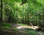 99999 Holbert Cabin  Lane, Tryon image
