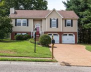 1707 Dorset Ct, Spring Hill image