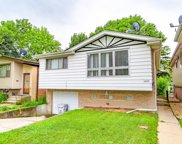 13054 Honore Street, Blue Island image