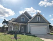 226 William Creek Drive, Holly Springs image