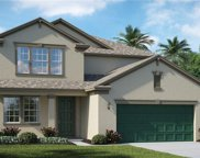 10902 Great Cormorant Drive, Riverview image