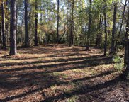 4306 Periwinkle Place, New Bern image