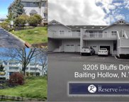 3205 Bluffs S Drive Unit #3205, Baiting Hollow image