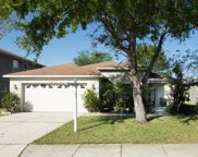2505 Brownwood Drive, Mulberry image