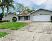 1418 Indian Trail S, Palm Harbor image