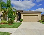 11016 Whittney Chase Drive, Riverview image