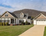 220  Pete Luther Road, Candler image