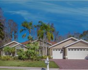 2205 Windsong Court, Safety Harbor image