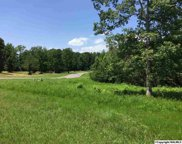 LOT 5 Island Drive, Scottsboro image