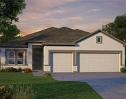 17652 Passionflower Circle, Clermont image