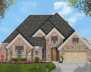 1757 Passionflower, Frisco image