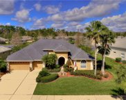 10559 Greencrest Drive, Tampa image