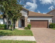 11870 Frost Aster Drive, Riverview image