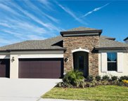 11838 Crossvine Drive, Riverview image