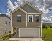 172 Bickley Manor Court, Chapin image
