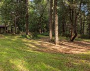 22022  Power Line Road, Foresthill image