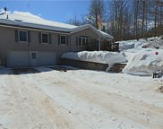 519 Cattail  Road, Livingston Manor image
