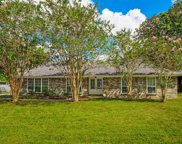 222 STONERIDGE CT, Orange Park image