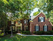 17002  Winged Thistle Court, Davidson image