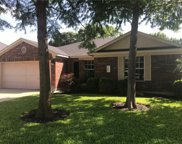 1205 Crossvine Way, Pflugerville image