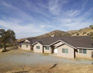 39453 Pepperweed, Squaw Valley image