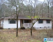 5870 Camp Winnataska Rd, Pell City image