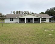 8092 Lake Nellie Road, Clermont image