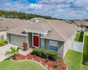 30325 Princess Bay Drive, Wesley Chapel image