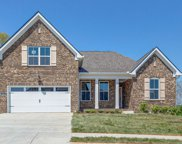 216 Star Pointer Way, Spring Hill image
