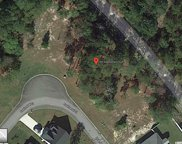 Lot 42 Swallow Tail Ct., Little River image