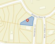 lot 530 Blue Indigo Ln., Myrtle Beach image