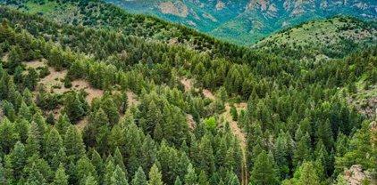 4646 Little Turkey Creek Road, Colorado Springs