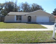 7712 Hinsdale Drive, Tampa image