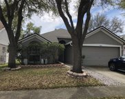 9728 Long Meadow Drive, Tampa image