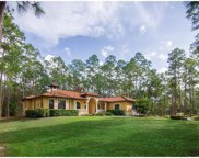 4617 SE 12th Ave, Naples image