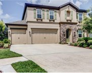 13809 Moonstone Canyon Drive, Riverview image