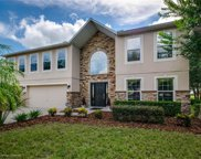 2901 Holly Berry Court, Kissimmee image