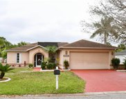 15561 Spring Line LN, Fort Myers image