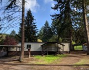 8003 175th Ave  SW, Longbranch image