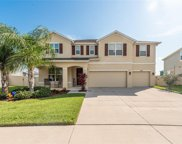 11607 Tetrafin Drive, Riverview image