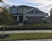 11601 Maple Palm Way, Tampa image