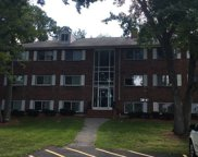 48 Fernview Ave Unit 12, North Andover image