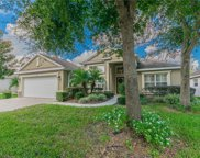 15513 Starling Water Drive, Lithia image