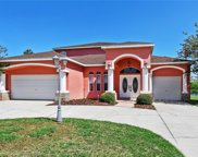 10902 Lynn Lake Circle, Tampa image