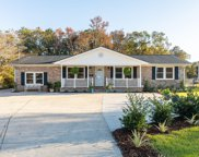 1390 Bluebird Drive, Mount Pleasant image