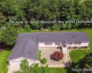 9716 Fish Road, Belding image