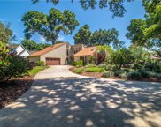 2925 Chelsea Woods Drive, Valrico image