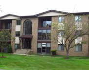 11111 South Kean Avenue Unit 203, Palos Hills image