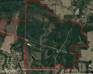 2300 Acres Kings Lake Road, Defuniak Springs image